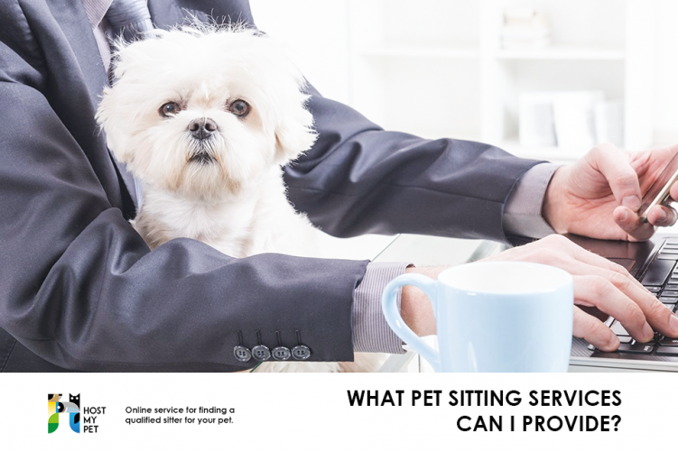 What pet sitting services can I provide?