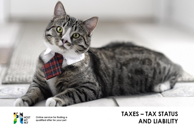 Taxes – Tax Status and Liability
