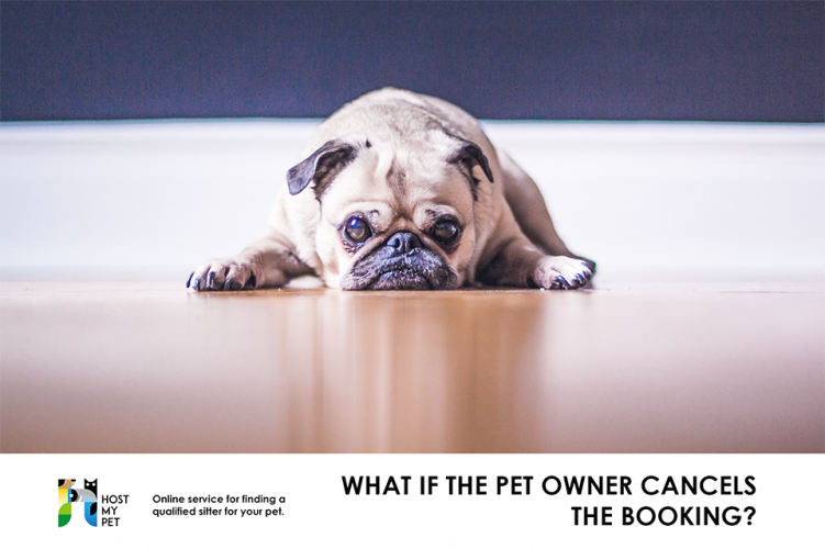 What if the pet owner cancels the booking?