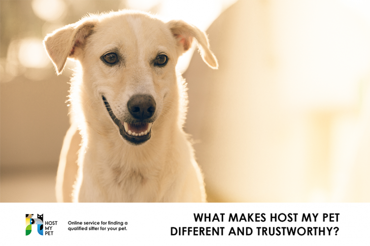 What makes Host My Pet different and trustworthy?
