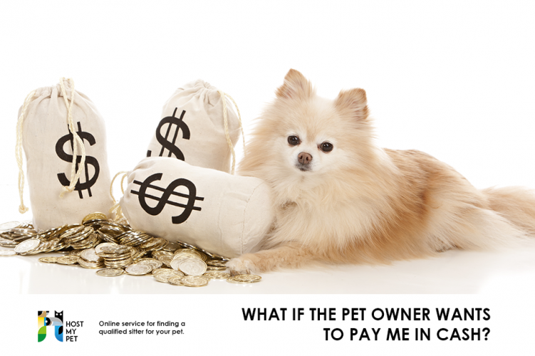 What if the pet owner wants to pay me in cash?